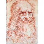 Autoritratto di Leonardo 1000 pezzi