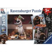 Puzzle 3x49 pezzi Pets soli in casa