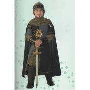 Ser Robert Del Drago costume 9/10 Anni