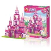 Il castello della regina B0152
