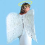 Ali angelo in piuma bianche h. cm.70x85 in busta