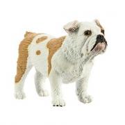 Bulldog modello