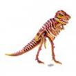 Puzzle 3D tirannosauro