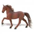 Cavallo Tennessee cm. 13