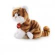 Gatto tigrato Brad cm. 24