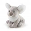 Koala Sweet collection