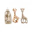 Sofia la giraffa set regalo