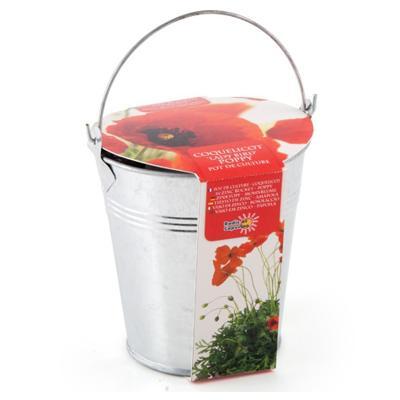 Vaso in zinco 12 cm. Papaveri