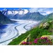 Ghiacciaio dell'Aletsch, Vallese 1000 pezzi