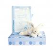 Confezione libro salute coniglio blu