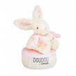 Carillon coniglietto fiocco rosa 17 cm