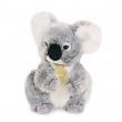 Peluche Koala 20 cm - Doudou