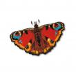 Aquilone farfalla