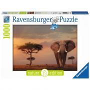 Elefante del Masai Mara Ravensburger Puzzle 1000 pz - Foto & Pae