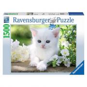 Gattino bianco puzzle 1500 pezzi