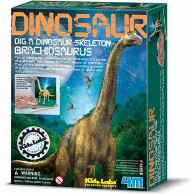 Kit Brachiosauro 4m