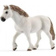 Giumenta Welsh Pony