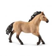 Stallone quarter horse