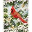 Good Fortune Cardinal