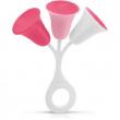 Tulipano sonoro rosa