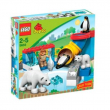 """5633 Lego Duplo Zoo """" Zoo Polare """" 2-5 anni"""
