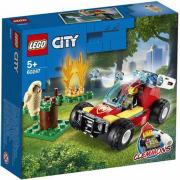 Incendio nella foresta 60247