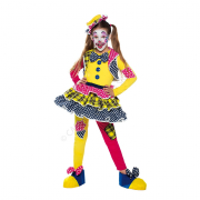 Miss clown costume