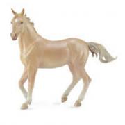 Cavallo Akhalteke