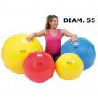 Palla ginnica diametro 55cm