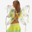 Ali farfalla gialle e viola