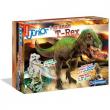Il Grande T-Rex Focus Junior