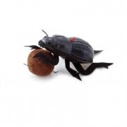 Stercorario peluche cm. 16 Trudi