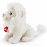 Leone bianco Lenardo