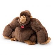 Gorilla marrone Rocco