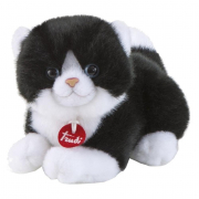Trudino gatto bianco nero