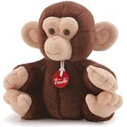 Trudino scimmia
