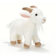 Beba capretta bianca 25cm