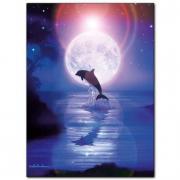 Delfino e luna piena 500 pezzi