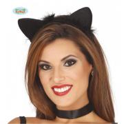 Orecchie gattina nere