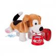 Cane Pipi beagle Max