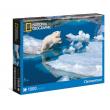 Puzzle Orso polare National Geographic 1000 pezzi