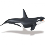 Orca cm. 17