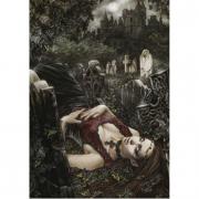 Favole by Victoria Francès: MIDNIGHT 1000 pezzi