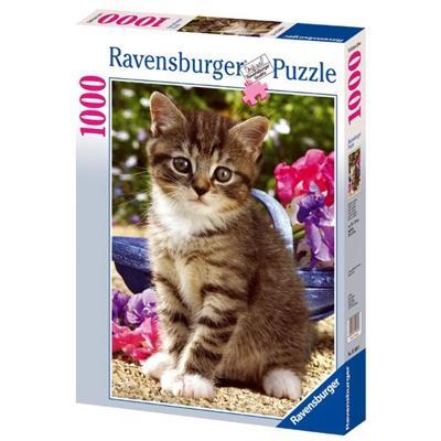 Gatto in Giardino 1000 pezzi