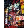 New York City 1000 pezzi