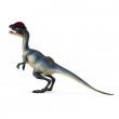 Dilophosaurus cm. 13.5
