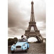 Romantica Parigi 1000 pezzi