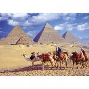 Le Piramidi di Giza, Egitto 1000 pezzi