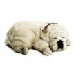 Perfect Petzzz bulldog white