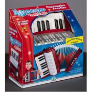Fisarmonica acustica